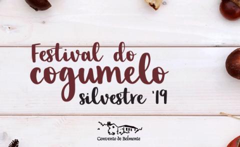 FESTIVAL DO COGUMELO